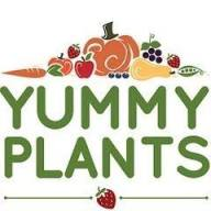 yummyplants