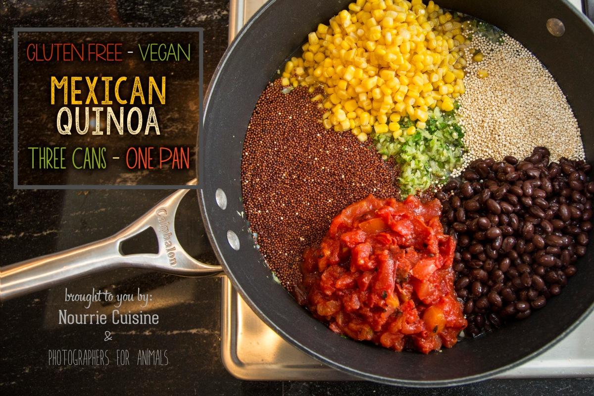 Gluten free vegan mexican quinoa nourrie cuisine for Cuisine quinoa